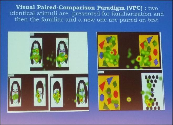 1: Detector de mirada con colores.