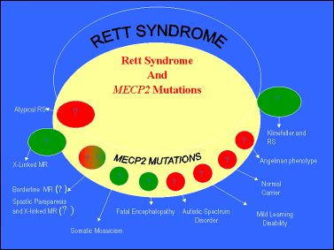 Mutaciones del gen MECP2
